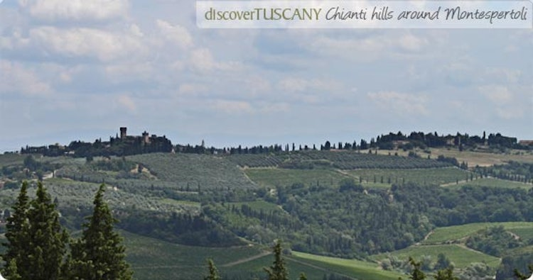 Chianti hills outside of Montespertoli
