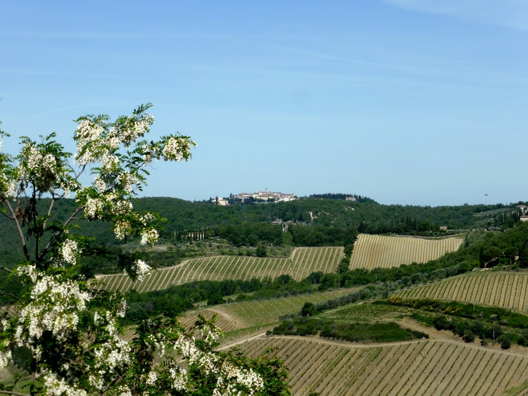 Panoramic views of Gaiole in Chianti