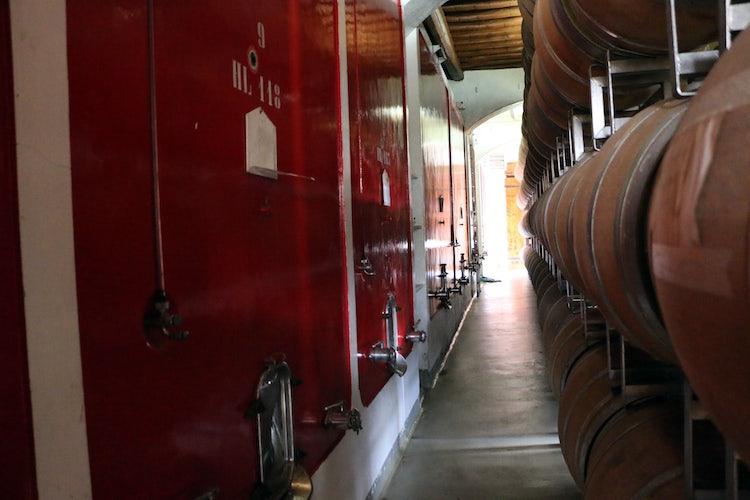 Wine cellar in Greve in Chianti Castello Uzzano
