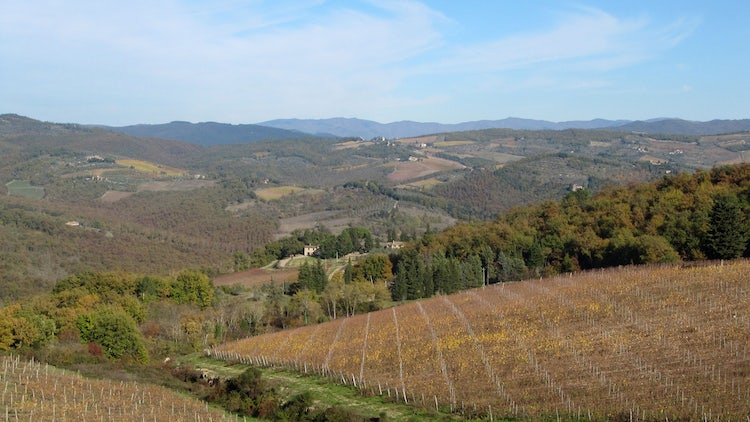 Travelling the Strada del Vino in Chianti Classico