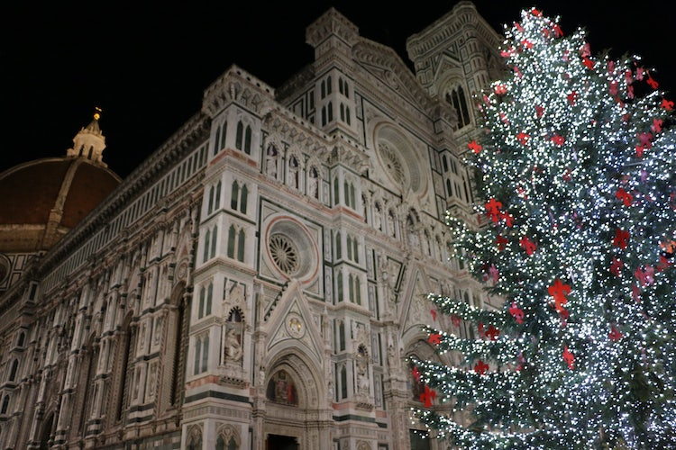 Christmas Tree in Florence Tuscany
