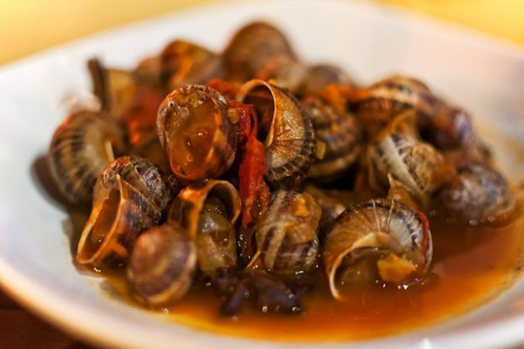 Cooked snails in Tuscany for Christmas