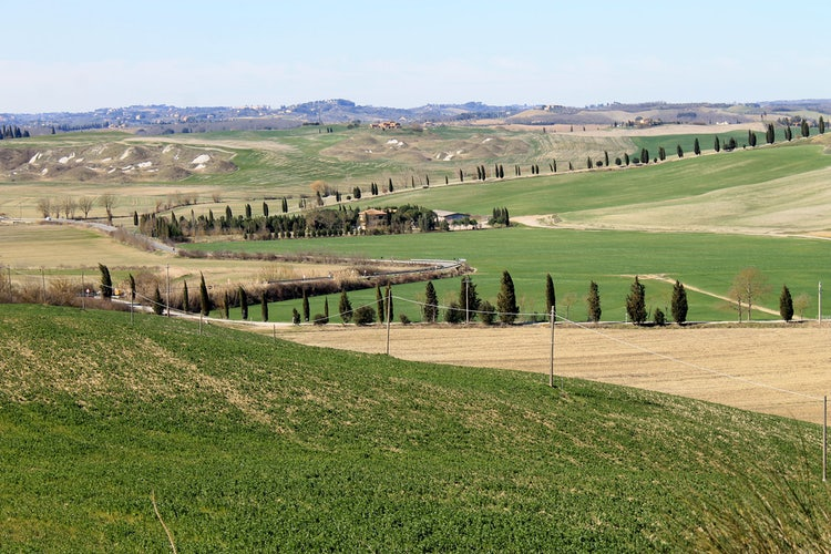 The Crete Senesi are an enchanting landscape close to Siena