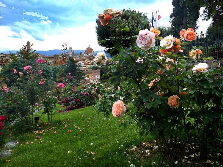 Eventi di maggio a firenze cosa fare a firenze e dintorni a maggio - Giardino delle rose firenze ...