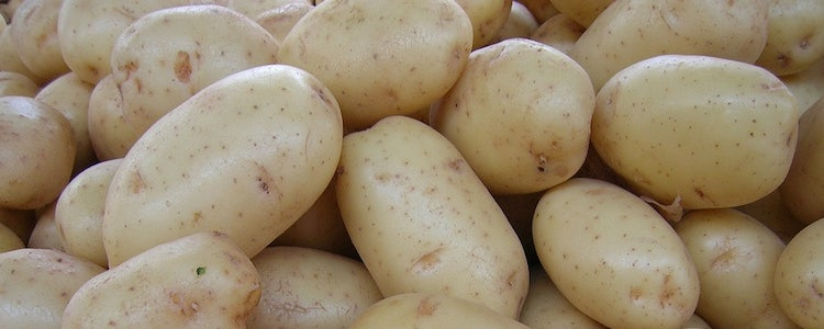 Potatoes in Tuscany: History, Recipes & Events