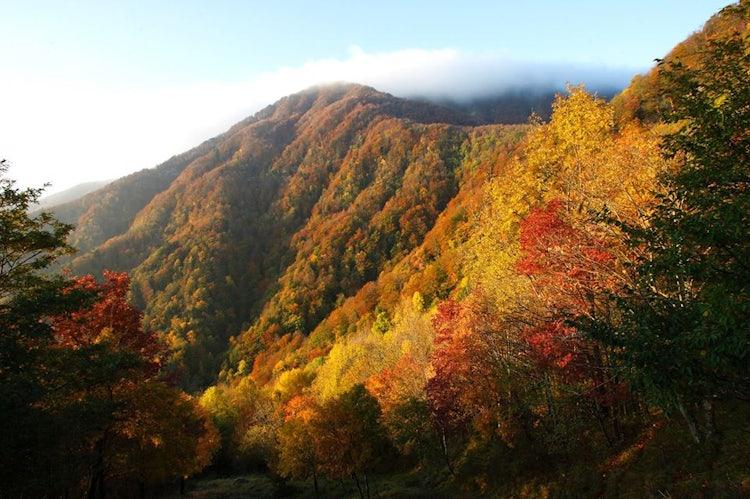 Eventi di novembre in Toscana: autunno in Casentino