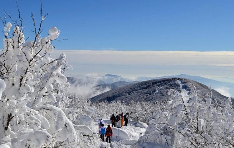Tuscany Snow near Casentino