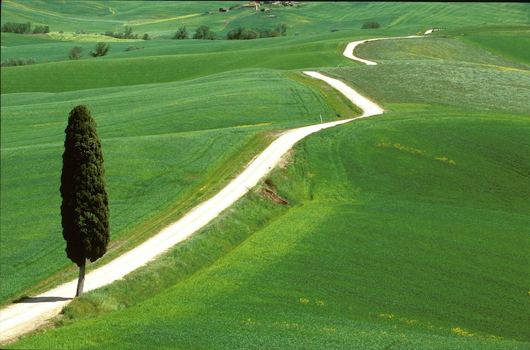 Tuscan White Roads in Val d'Orcia