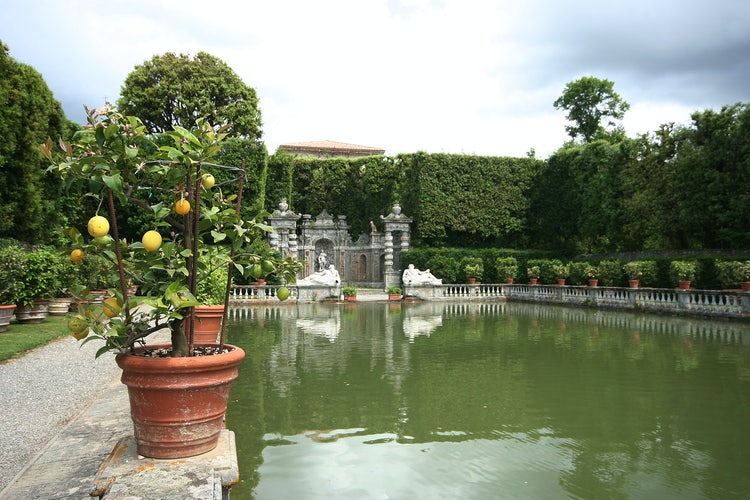 Villa Reale in Marlia, Lucca: Over 200 vases with fruit trees in the Lemon garden