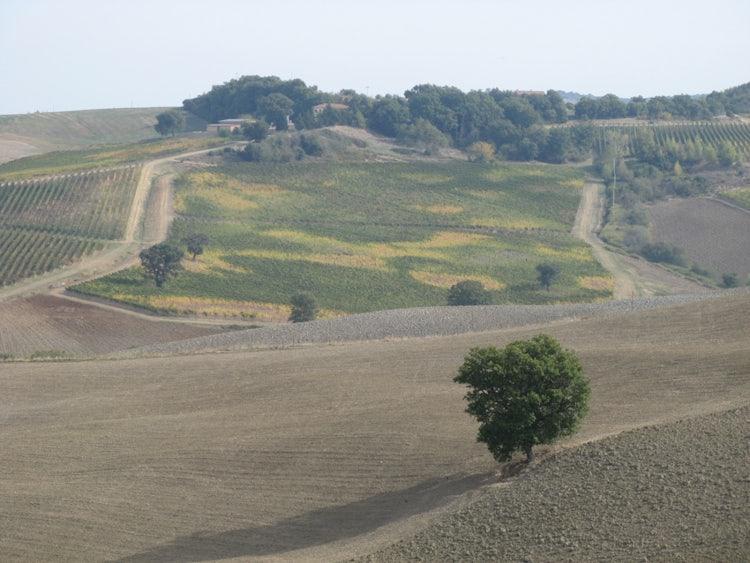Panorama di Cinigiano nella Toscana