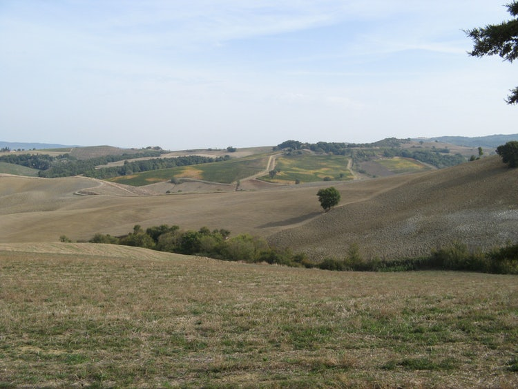 Landscape around Cinigliano