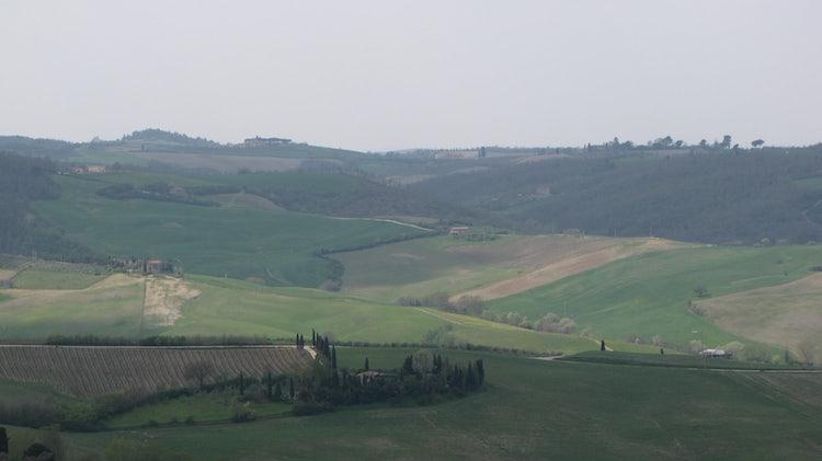 Montepulciano wine tasting