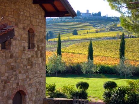 Viticcio A Chianti Clico Vineyard Accommodation