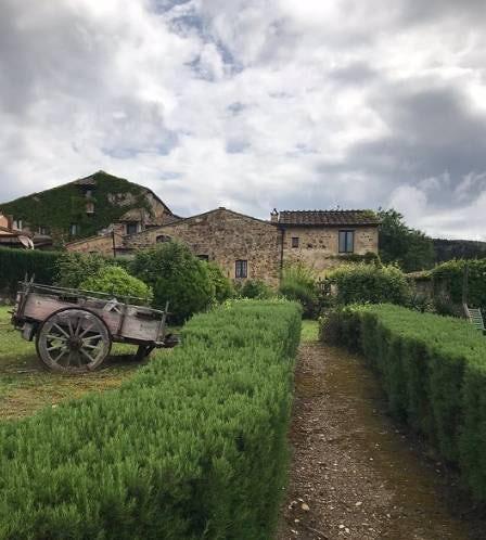 Podere Patrignone rosemary walk-ways :: Discover Tuscany