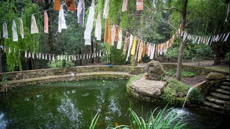 Podere Patrignone pond in Castellina in Chianti :: Discover Tuscany