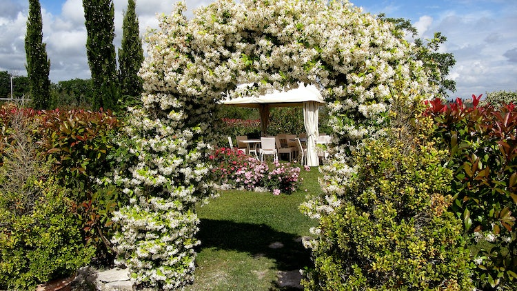 stupendous garden archway. Stupendous garden views towards San Gimignano  Taverna Bibbiano Romantic Holiday Rentals in Tuscany Honeymoon Accommodations for