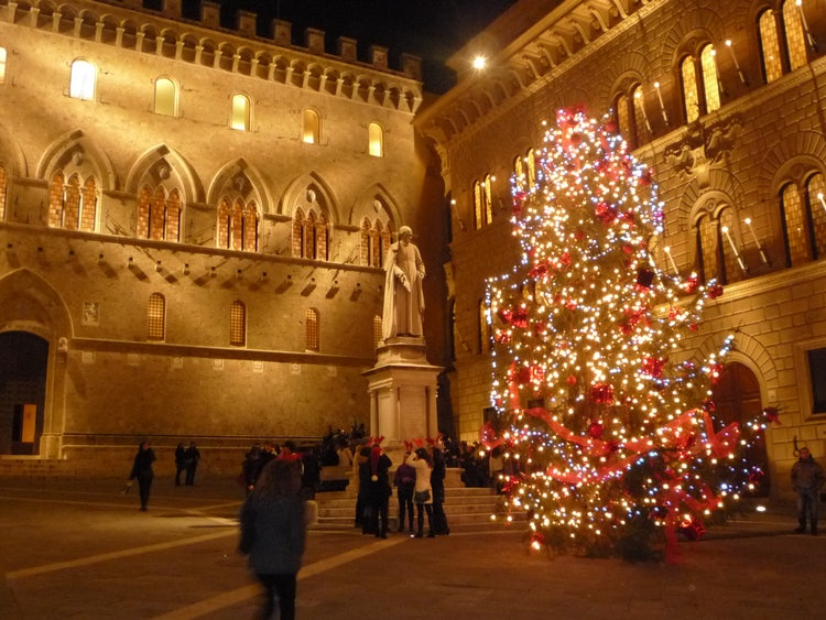 Chrsitmas trees and decorations in Siena